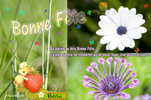 ☼ ♥ ♫ ☼ 23 JUILLET ☼ ♫ ☼ BONNE FÊTE ☼ ♫ ☼ POUR TOI MON AMIE BRIGITTE ☼ ♫ ♥ ☼ ~♥~ http://oo-petite-fleur-bleue-oo.skyrock.com/ ~♥~