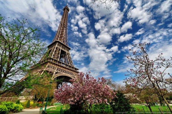 ☆ ♪ ♥ ♪ 05 AOÛT ♪ ♥ ♪ BONNE FÊTE ABEL ♪ ♥ ♪ BALADE ENTRE AVIGNON & PARIS ♪ ♥ ♪ ☆