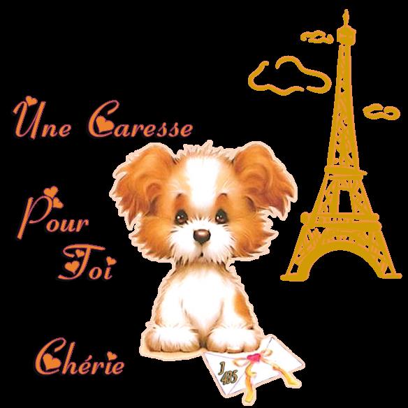 ♥ ♪ NEWS DU JOUR ♥ ♪ ♥ JE M'APPELLE CHÉRIE ♥ ♪ ♥ MON HISTOIRE  APRÈS LA SIESTE ♪ ♥ ~♥~ UN NOUVEAU MEMBRE DE LA FAMILLE ♥ ♪ ♥ CHEZ MES AMOURS DE PARIS ~♥~