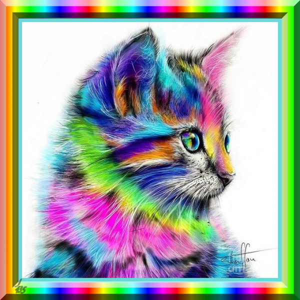 (☼♥☼) ♥ ♪ ♥ ♪ 28 SEPT ♪ ♥ ♪ BON ANNIVERSAIRE ♥♫♥ MON AMIE CATHERINE ♪ ♥ ♪ ♥ (☼♥☼) ~♥~ https://x3-crazycat-x3.skyrock.com/ ~♥~