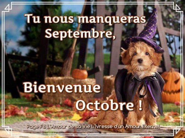 ✿ AU REVOIR SEPTEMBRE ❀ BONJOUR OCTOBRE ✿ ~♥~ CALENDRIER CATH ~♥~ OCT ✿ ~♥~ http://signaturesdecoklane.eklablog.com/ ~♥~