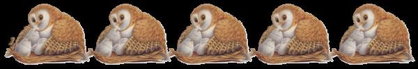 (☼♥☼) ☆ ☾ ♫ CHOUETTE NUIT ♫ ☆ ♫ MERCI JOSIE ♫ ☆ ♫ BELLE RÉCOLTE ♫ ☾ ☆ (☼♥☼)  ☆ ~♥~ http://josie2arles.skyrock.com/ ~♥~ ☆