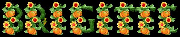 ✿ MERCI BRIGITTE ✿ JEUDI 1er NOVEMBRE ♥ CADEAU POUR TOI MA CHÈRE JACOTTE ♥ ~♥~ http://oo-petite-fleur-bleue-oo.skyrock.com/ ~♥~