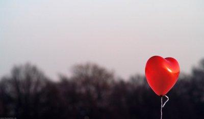 -Arreté de dire que l'amour est mort, ça ne meurt pas l'amour . ♥