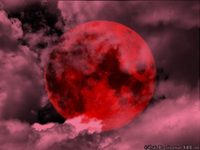 Red Moon // Chapitre 1.
