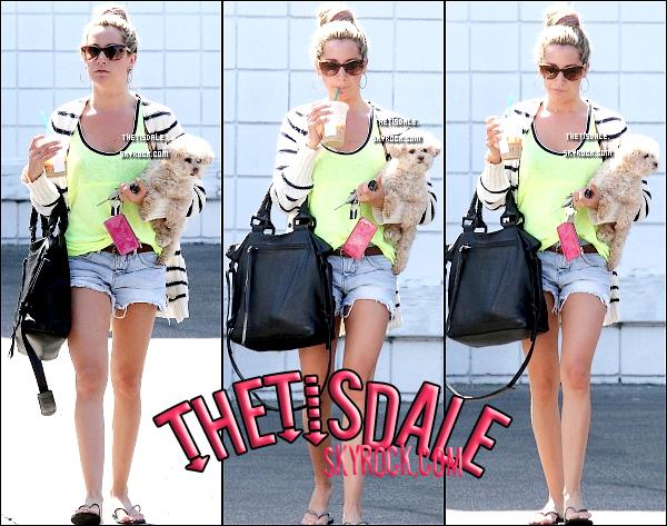 07.08.12 - [ publié ce 12.08 sur le site officiel ] - Ashley était de sortie avec Maui, son chien, dans Hollywood.