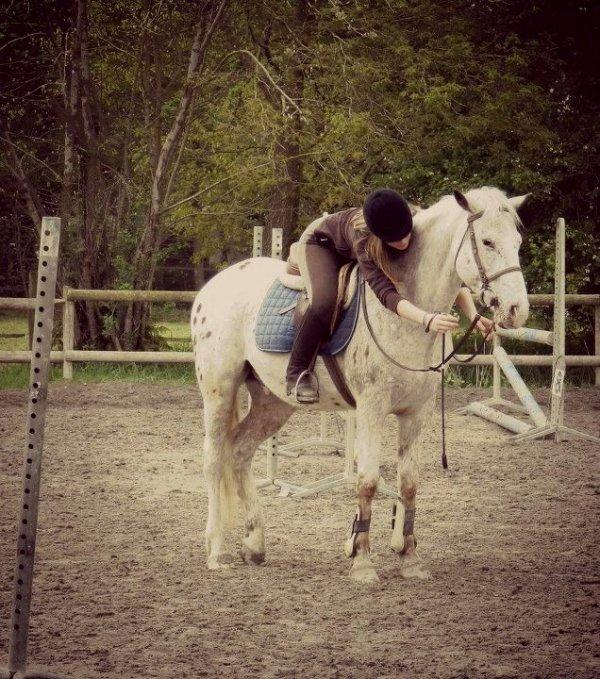 Tes sauts, ta vitesse, ton galop. La perfection mon bébé. ♥