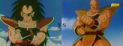 Sondage n°1 : Raditz vs Nappa ( Dragon ball z )