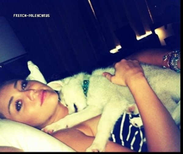 News photo perso de Miley