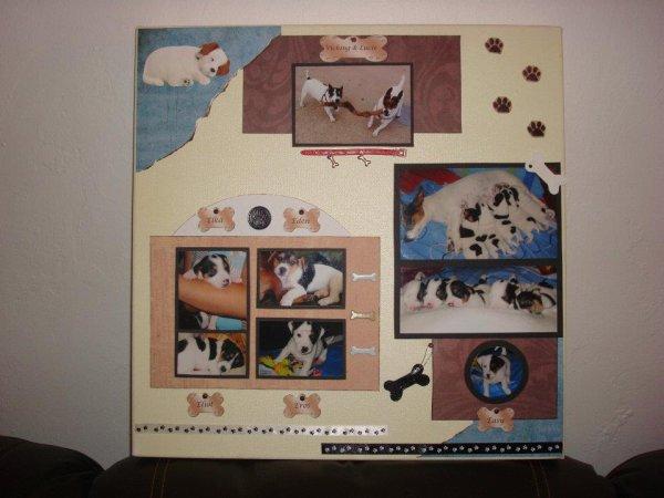 cadre fait sur commande (thème chien)