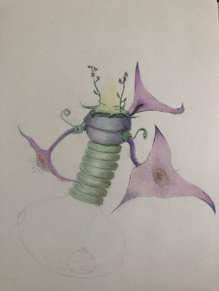 Crayons de couleurs, estompe, fusain et une petite dose d'imagination.