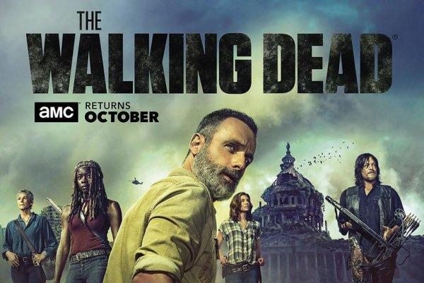 THE WALKING DEAD (saison 9)