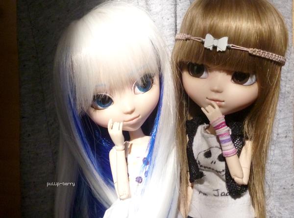 Séance photo n°10 : Luna , Aiko et Holly