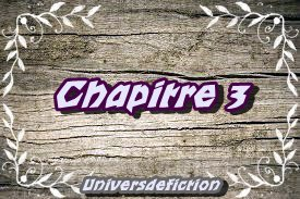 Chapitre 3 _ good terrible boy