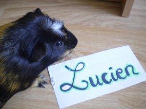 Marla (& Lucien).