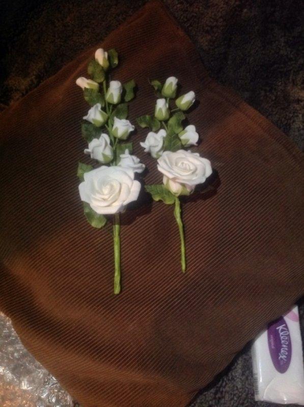 Tiges avec ses roses.