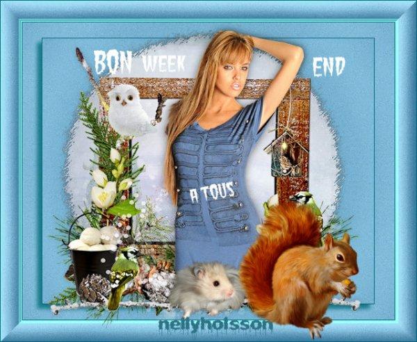 je vous souhaite un excellent week end a tous....gros bisous