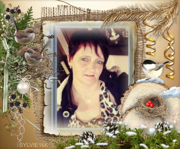 merci mon amie Sylvie166 pour ce joli kdo et de cette superbe amitié gros bisous