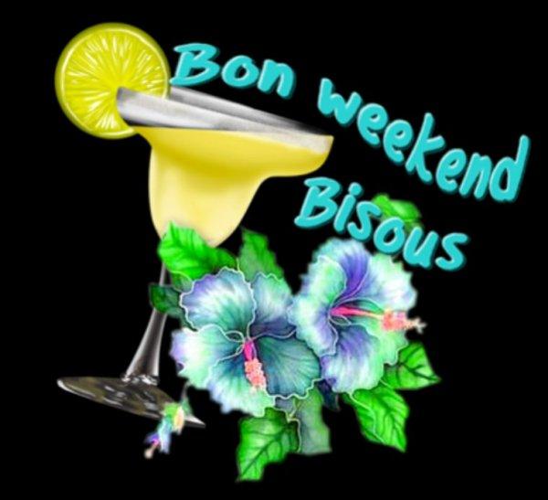 Je vous souhaite un bon week-end a lundi gros bisous