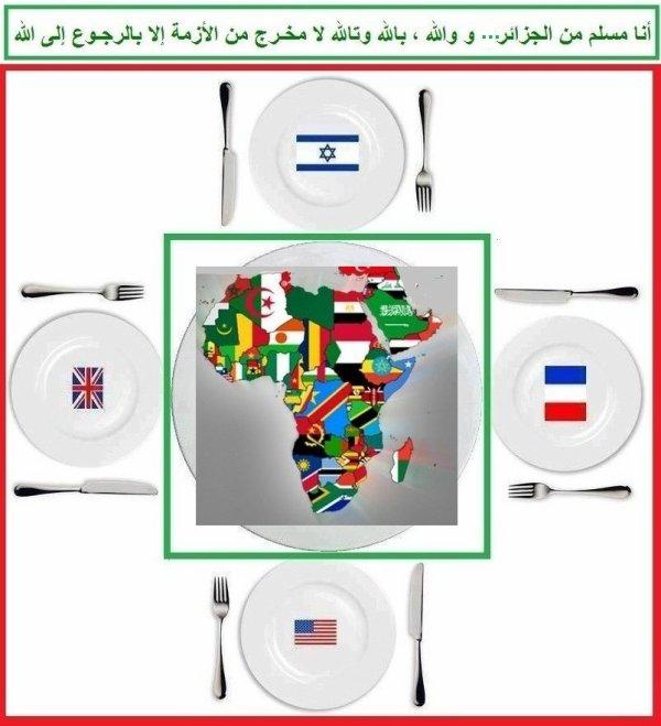 ---------------------------------------========o( Arabs Today   )o========-------------------------------------