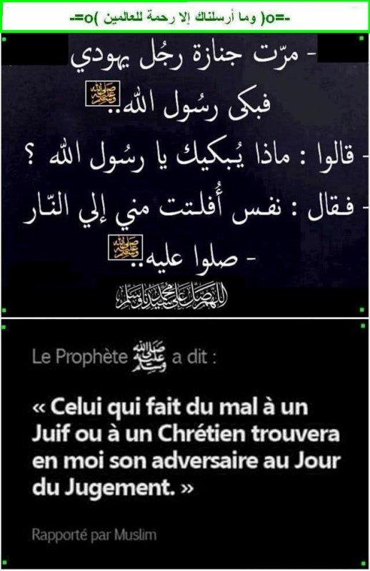 --------------------=o(  Le Comportement du musulman est la carte de visite de l'islam  )o=--------------------