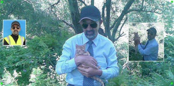 ------------------=o(  Ninou à attraper une petite souris dans une maison près de la forêt  )o=-------------------