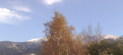 C 'est bon de rester qqles temps dans le calme de la Montagne ..  Du coté de Mont-Louis . :-)