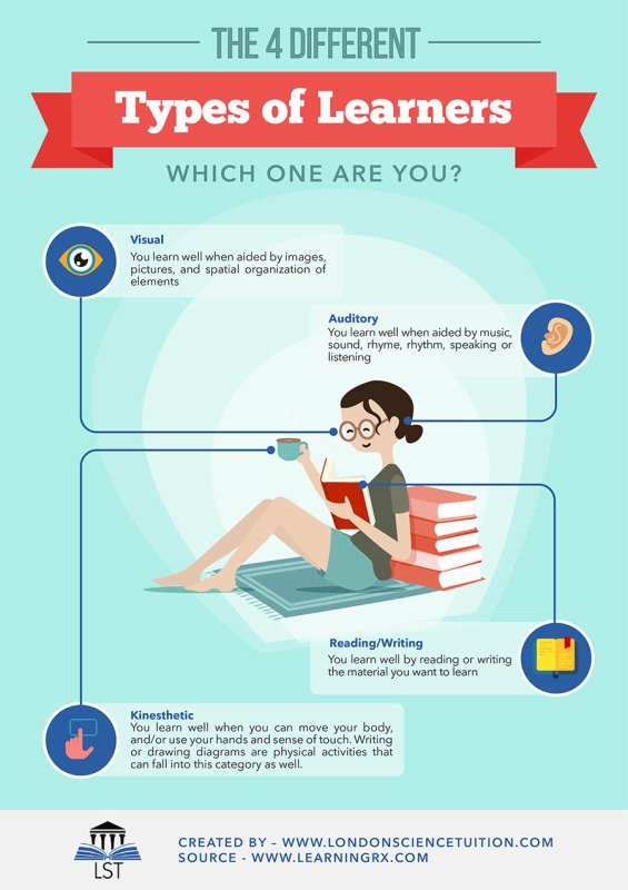 The 4 Different Types of Learners, Which One Are You?