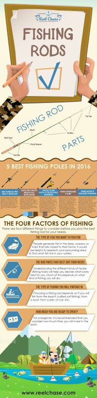 Best Fishing Rods for the Money