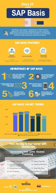 SAP BASIS Jobs Salary Trends