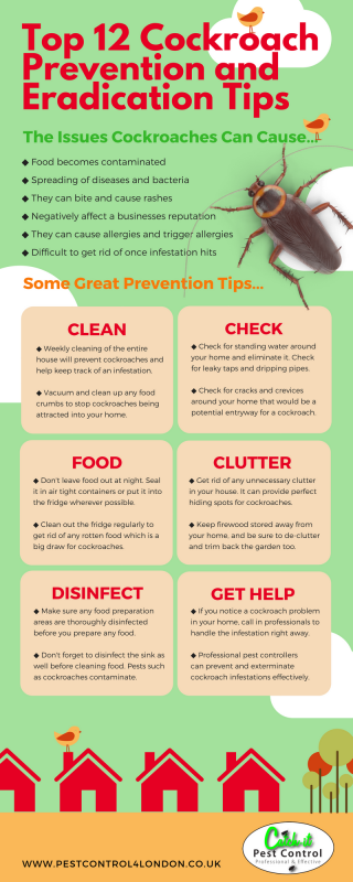 Getting Rid Of, Controlling And Preventing Pest Insects