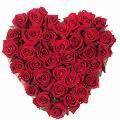 rose ...en coeur ^^