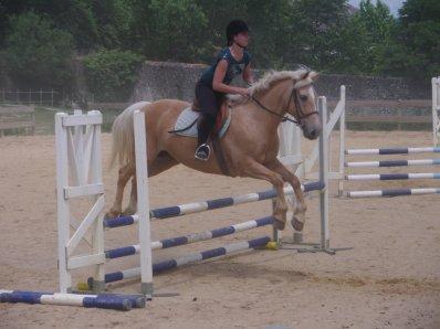 ma passion : les chevaux