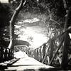 Summer Love - Chapitre 9