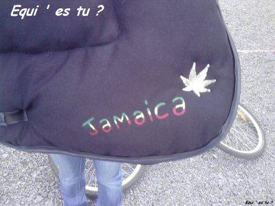 Tapis jamaïque