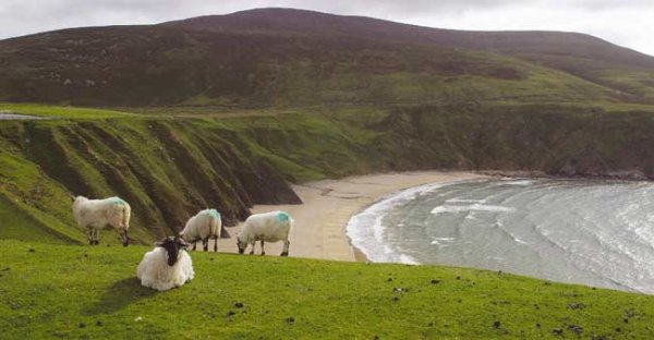 GOLF EN IRLANDE  MAI 2015
