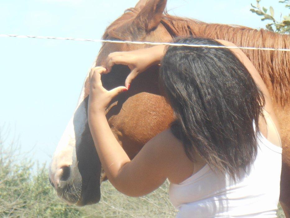 Blog de gallops-you-in-my-heart