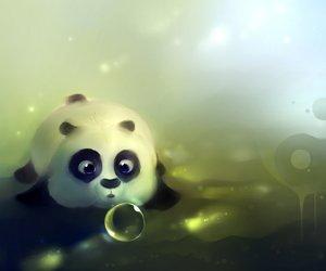 Article spécial panda