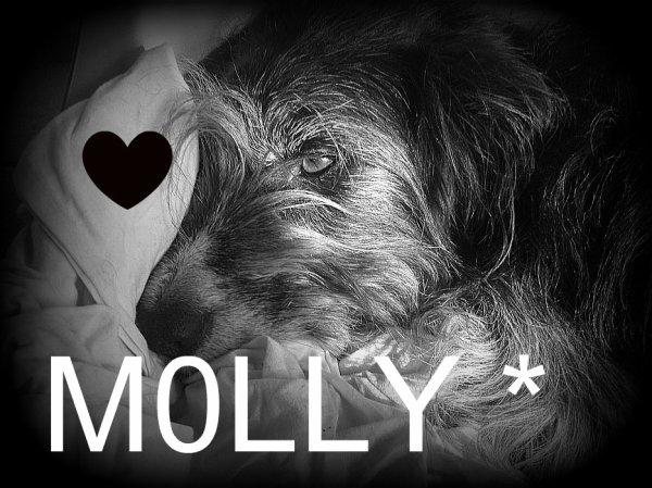 Molly .