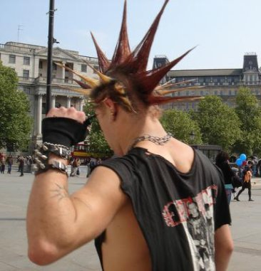 PUNK IS NOT DEAD !!!