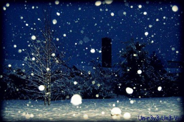 Dimanche 28 Novembre 2010 : Il neige :)