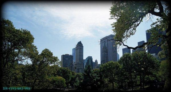 New-York  ღ