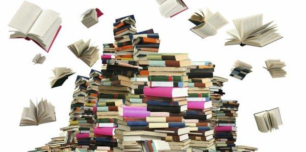 66 - loterie des auteurs de livre