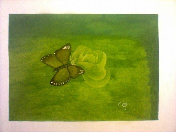 le papillon de liberté