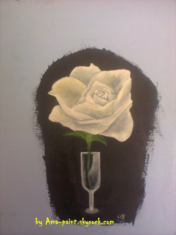 my*** WHITE ROSE ***forever