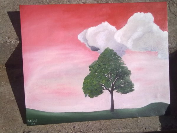 My lonely tree