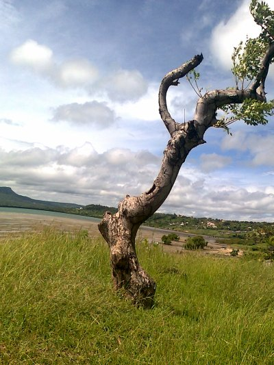 Madagascar: mon pays