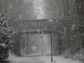 neige du 15 janvier 2013