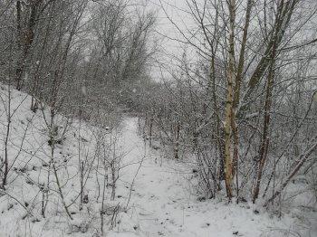 neige du 15 janvier 2013 (suite)