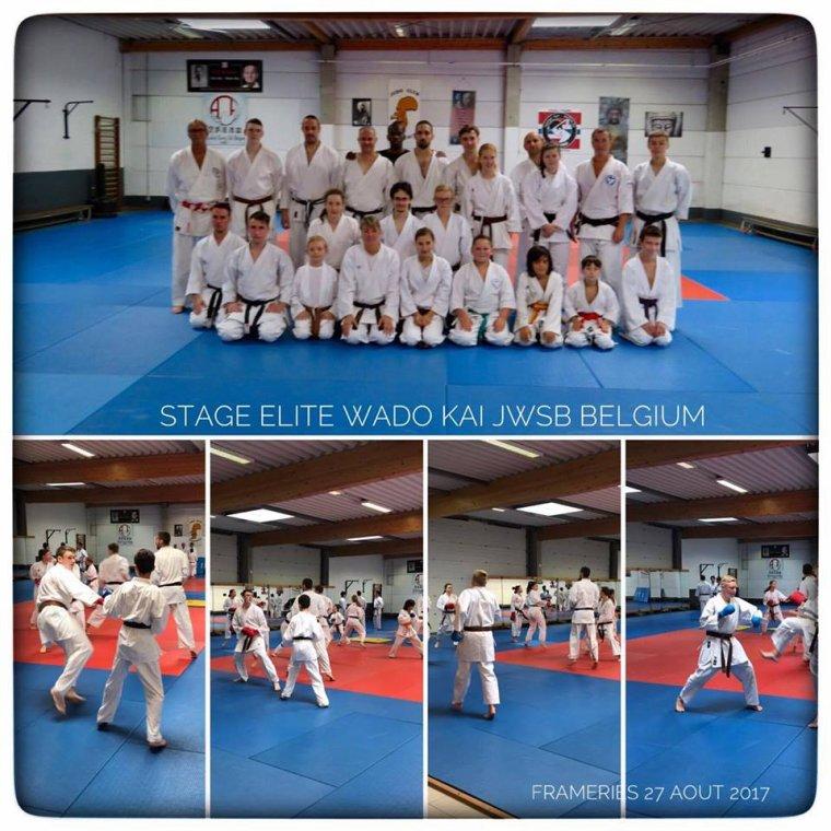 Entraînement Elite Wado Kai Belgium